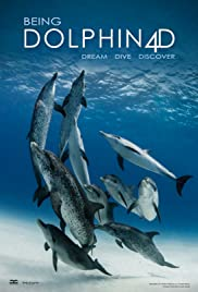 Being Dolphin 4D Poster