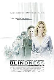 「盲流感 (2008)」电影海报图片