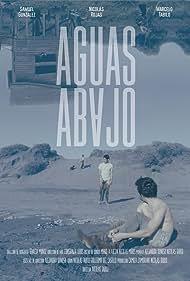 Aguas Abajo (2014)
