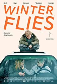 Winter Flies Poster