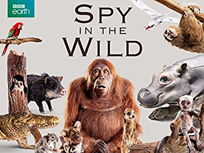 New movies downloading websites Meet the Spies by none [WEB-DL]