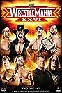 WrestleMania XXVI (2010) Poster