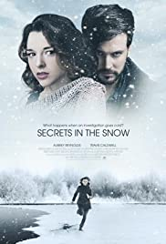 Secrets in the Snow Poster