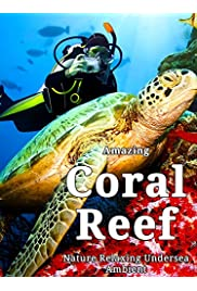 Amazing Coral Reef Nature: Relaxing Undersea Ambient