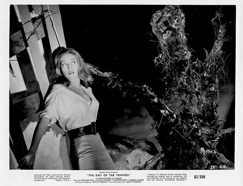 Janette Scott in The Day of the Triffids (1963)