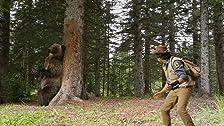 Andy e l'orso grigio