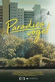 Paradiesvogel Poster