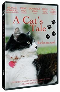 Direct download links for latest movies A Cat's Tale USA [320p]