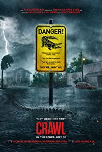 A young woman, while attempting to save her father during a Catagory 5 hurricane, finds herself trapped in a flooding house and must fight for her life against alligators.