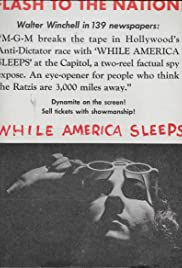 While America Sleeps Poster