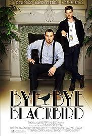 bye bye blackbird summary