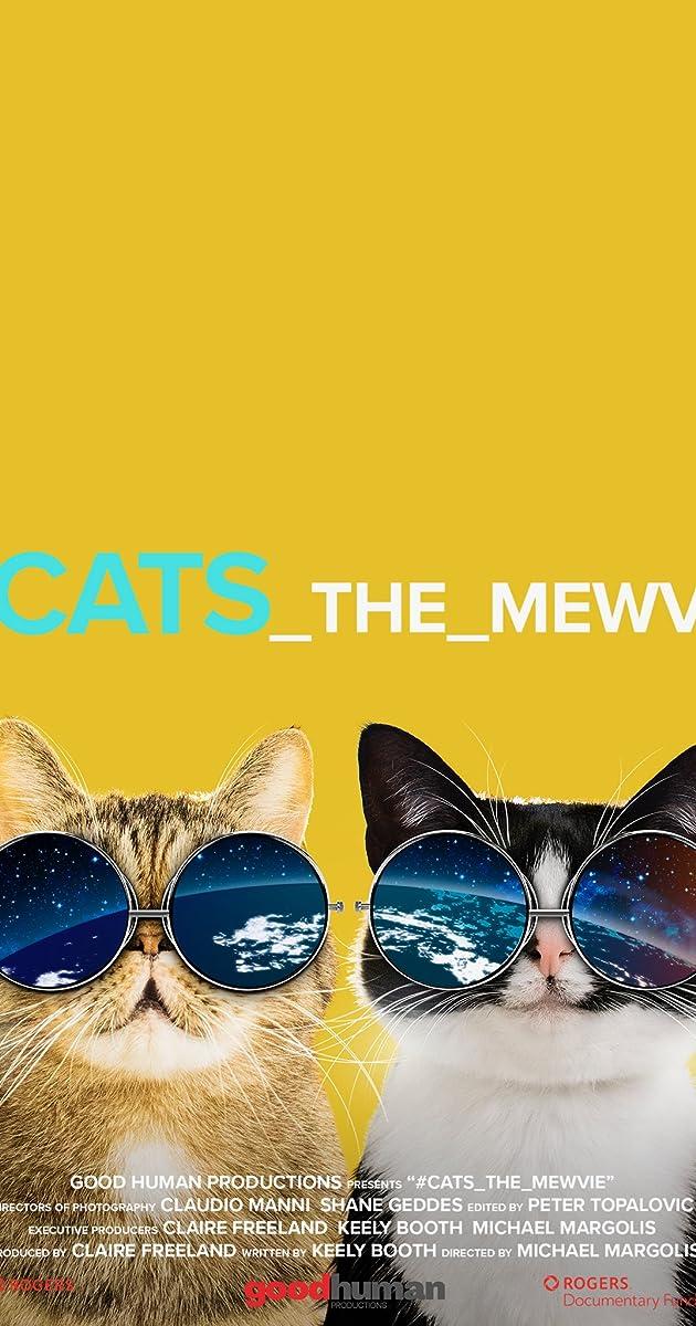 Cats The Mewvie 2020 Imdb
