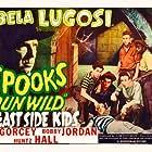 Bela Lugosi, David Gorcey, Leo Gorcey, Donald Haines, Huntz Hall, Ernest Morrison, and Bobby Jordan in Spooks Run Wild (1941)