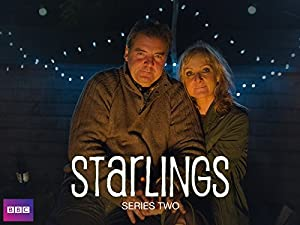 Where to stream Starlings