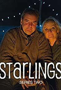 Primary photo for Starlings