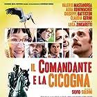 Il comandante e la cicogna (2012)
