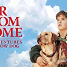Jesse Bradford in Far from Home: The Adventures of Yellow Dog (1995)