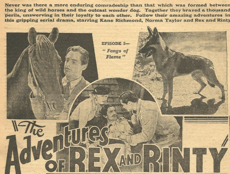 Pedro Regas, Kane Richmond, Norma Taylor, Rin Tin Tin Jr., and Rex in The Adventures of Rex and Rinty (1935)