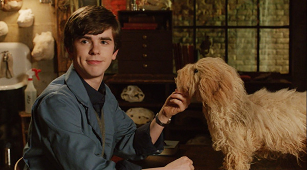 "Bates Motel"" A Boy and His Dog (TV Episode 2013) - Photo Gallery ..."