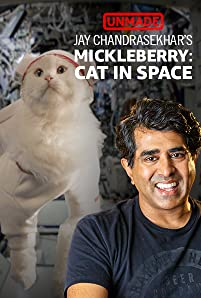 "A movie studio once told Jay Chandrasekhar and his Broken Lizard comedy troupe to write any movie they wanted. So, naturally, they created a film with an astronaut who was a cat and called it 'Mickleberry: Cat in Space.' The studio ended up passing on the project, but we said, ""Yes!"""
