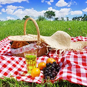 Best sites to download latest english movies People's Choice Challenge: Outdoor Picnic [[movie]