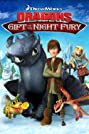 Dragons: Gift of the Night Fury (2011) Poster