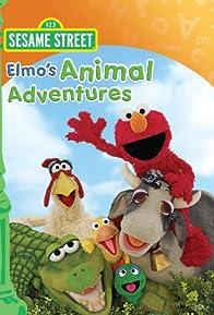 Primary photo for Elmo's Animal Adventures
