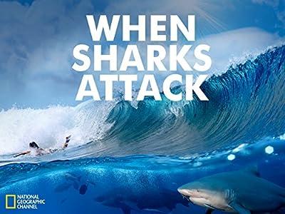 Laster ned rørfilmer When Sharks Attack: Carolina Chaos  [2K] [iPad] [720pixels] (2016)