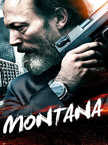 Montana (2014) Dual Audio Hindi 350MB BluRay 480p x264