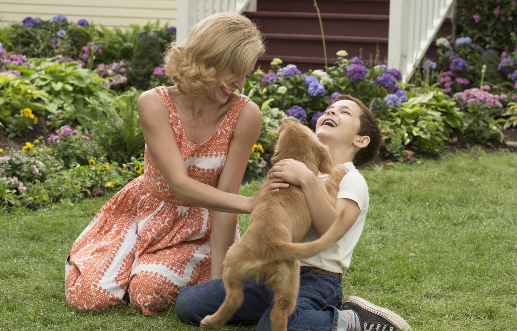 Josh Gad, Juliet Rylance, and Bryce Gheisar in A Dog's Purpose (2017)