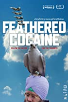 Feathered Cocaine (2010) Poster