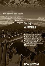 The Dog of Pompeii
