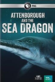 Attenborough and the Sea Dragon Poster