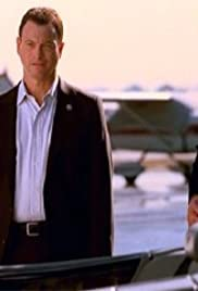 Felony Flight Poster