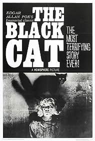 The Black Cat Poster - Movie Forum, Cast, Reviews