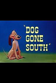 Dog Gone South (1950) Poster - Movie Forum, Cast, Reviews