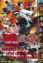 Fury of King Boxer