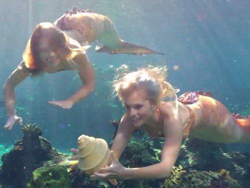 Mako mermaids hulu