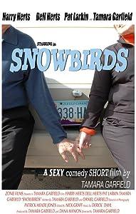 No cost movie downloads Snowbirds USA [480i]