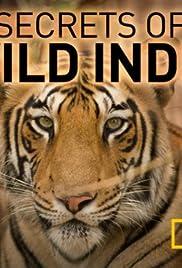 Secrets of Wild India Poster