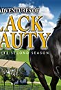 The New Adventures of Black Beauty (1992) Poster