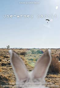 Primary photo for One-Armed Rabbit