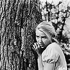 Hope Lange in Peyton Place (1957)