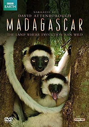 Where to stream Madagascar