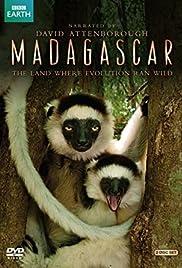 Madagascar Poster - TV Show Forum, Cast, Reviews