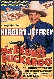 The Bronze Buckaroo Poster