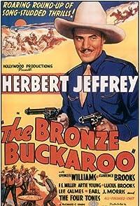 Primary photo for The Bronze Buckaroo
