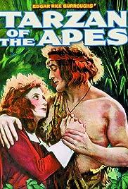 Tarzan of the Apes(1918) Poster - Movie Forum, Cast, Reviews