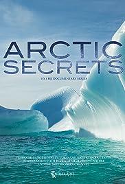 Arctic Secrets Poster