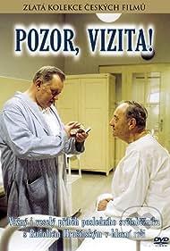 Pozor, vizita! (1982)